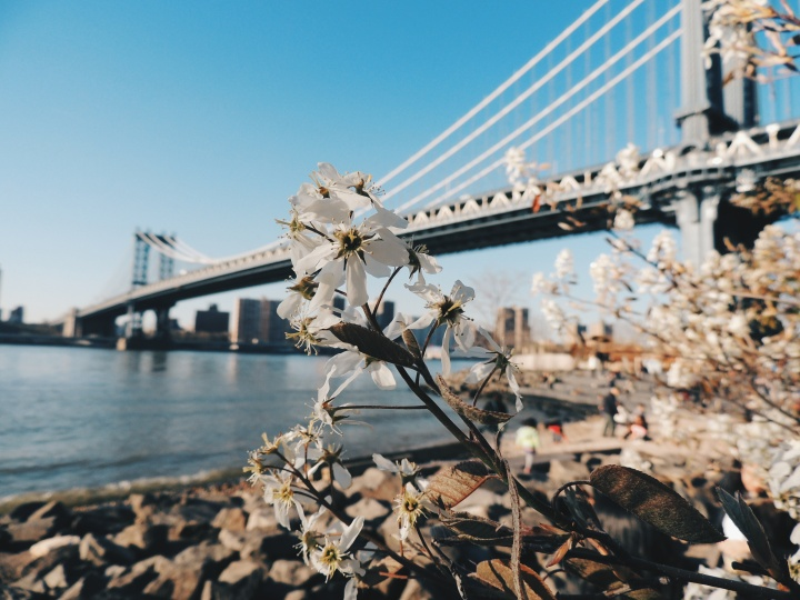 20 Things You Learn While Living inNYC